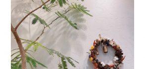 聖蹟桜ヶ丘ネイルサロンGREENroom 4月定休日